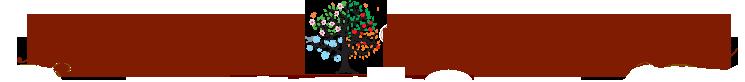 Négy Évszak Kertészet